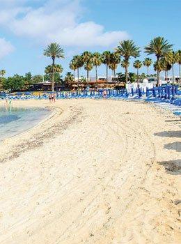 beach sand palm trees cyprus