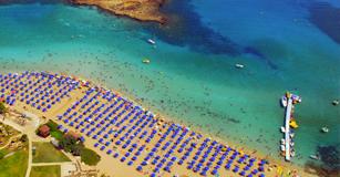 cyprus beach fig tree bay