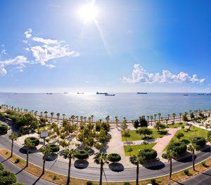 sun sea palm trees cyprus